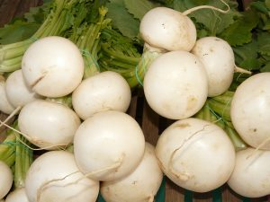 swede-turnip-5743_1920